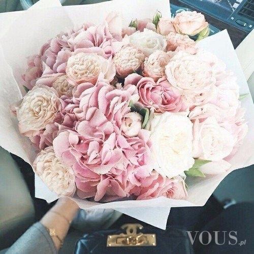 02d91aef2f2d25 Piękne róże, każda kobieta o nich marzy ⋆ VOUS.pl