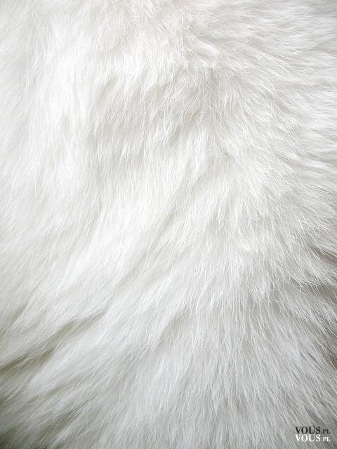 Białe futro. Futerkowy materiał. Nosicie futra?