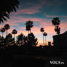 Zachodzące słońce na wybrzeżu, cienie palm