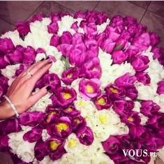 bukiet kwiatów z krokusów