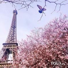 paryż wiosną