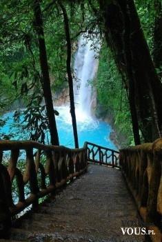 piękny wodospad, ścieżka w lesie,