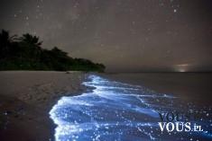 gwiazdy odbite w oceanie