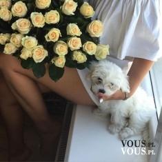 bukiet żółtych róż, co symbolizuje róża
