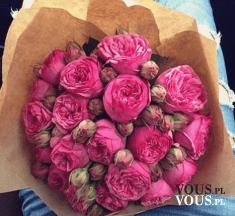 Bukiet różowych kwiatów. Bukiet z piwonii.