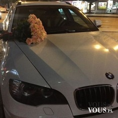 białe BMW