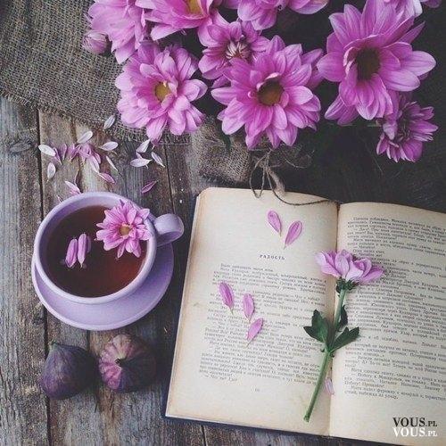 Piękne świeże kwiaty, fioletowe kwiaty, lubicie dostawać kwiaty? :)