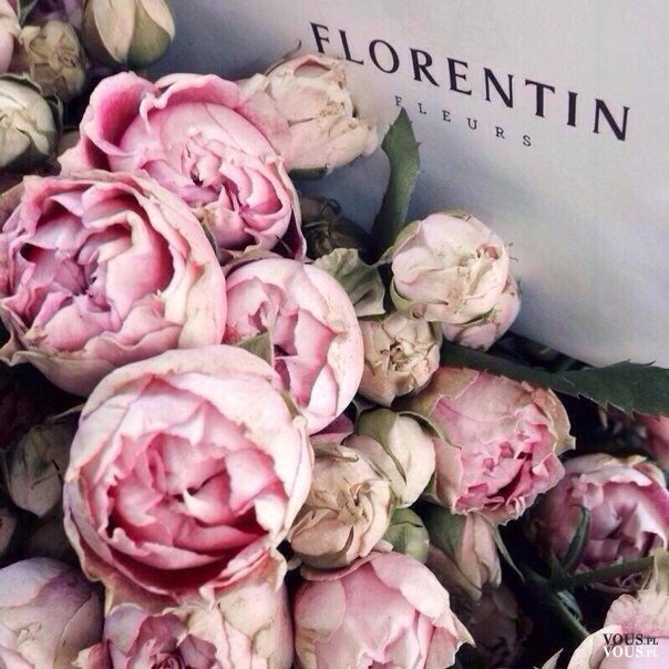 Piękne i pachnące piwonie <3 bukiet blado różowych kwiatów