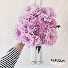 Wiązanka kwiatów, świeże i pachnące kwiatki, śliczny bukiet