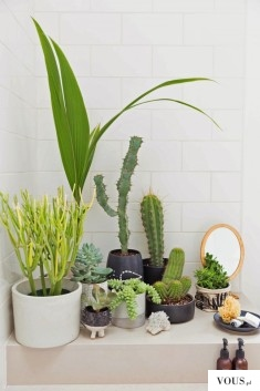This Blogger's Indoor Garden Collab With Etsy Is #GardenerGoals