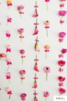 tło na ściane z prawdziwych różowych kwiatów