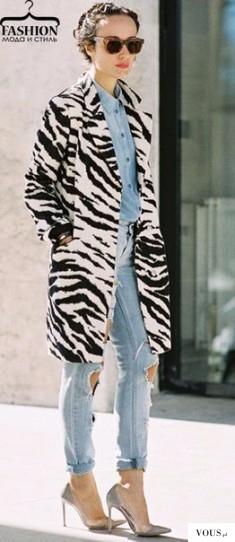 Płaszcz zebra, gdzie kupić płaszcz w zebrę? Afrykański wzrór