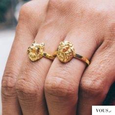 wilk i lew, złote pierścienie