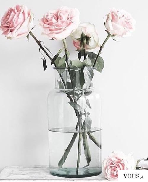 Róże w wodzie