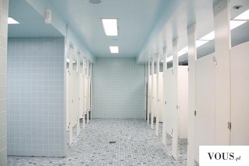 szara toaleta