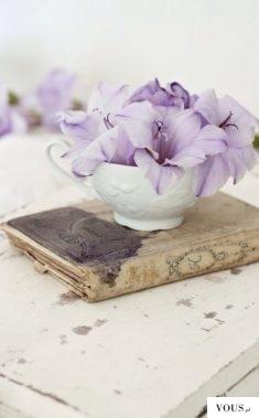 fioletowe lilie