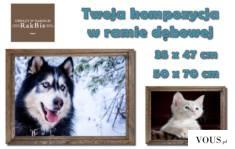 Dla nas #pies lub #kot to członek rodziny. Pamiątkowe #zdjęcie waszego pupila zasługuje na odpow ...