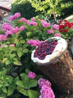 Pavlova z kremem borówkowym i curdem z owoców leśnych | AleTorcik!