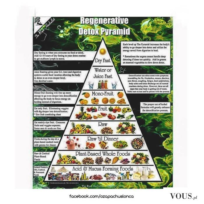 Piramida żywieniowa i detoxu
