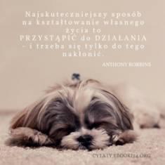 ✩ Anthony Robbins cytat o kształtowaniu własnego życia ✩   Cytaty motywacyjne