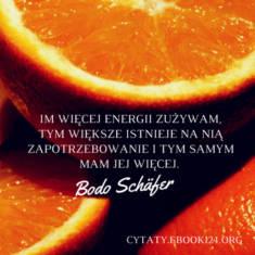 ✩ Bodo Schäfer cytat o energii ✩ | Cytaty motywacyjne