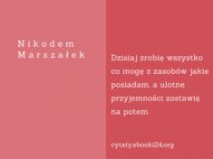✩ Nikodem Marszałek cytat o pracy i przyjemnościach ✩   Cytaty motywacyjne