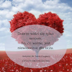 ✩ Antoine de Saint-Exupery cytat o tym co ważne ✩ | Cytaty motywacyjne