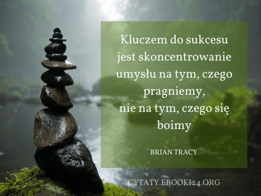 Brian Tracy Cytat O Sukcesie Cytaty Motywacyjne