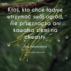 ✩ Dag Hammarskjold cytat o utrzymywaniu porządku ✩ | Cytaty motywacyjne