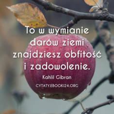✩ Kahlil Gibran cytat o obfitości i zadowoleniu ✩ | Cytaty motywacyjne