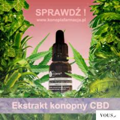 https://konopiafarmacja.pl/produkty-konopne/95-olej-cbd-5-essenz-15-ml.html Ekstrakt z konopi pr ...