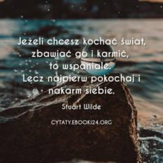 ✩ Stuart Wilde cytat o zbawianiu świata ✩ | Cytaty motywacyjne