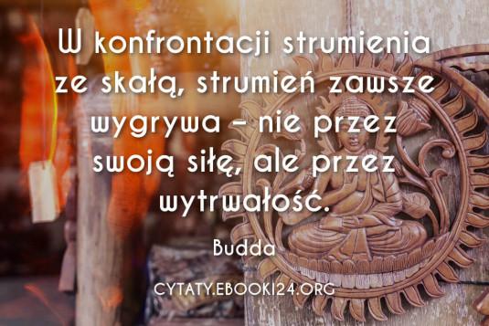 ✩ Budda cytat o wytrwałości ✩   Cytaty motywacyjne