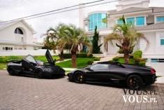 luksusowe samochody przed willa
