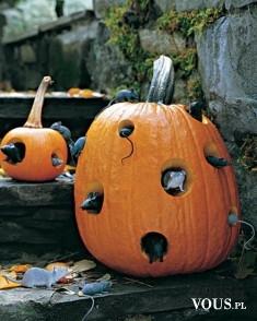 Dekoracje na hallowen – dynia i myszki, jakie są najlepsze dekoracje na hallowen?