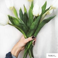 Bukiet kwiatów, kwiaty jak namalowane, białe kwiaty