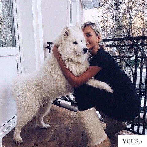 Duży biały pies
