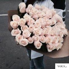 Róże w kolorze pastelowego różu