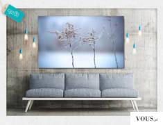 Fotografia wykonana w mroźny styczniowy  poranek. Kadr na urokliwą roślinę w zimowej atmosferze  ...