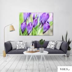 Piękne fioletowe tulipany jako motyw dekoracji ściennej. Obraz polecamy do upiększenia ścian w s ...