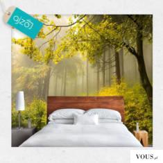 Fototapeta do sypialni z motywem zamglonego lasu o poranku.