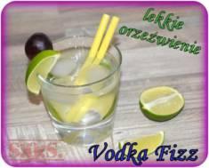 Drink Vodka Fizz – lekko słodki orzeźwiający drink z wódką;)  Drink Vodka Fizz | Blog Kuli ...
