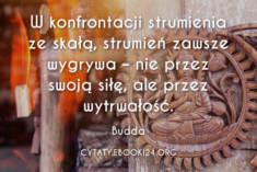 ✩ Budda cytat o wytrwałości ✩ | Cytaty motywacyjne