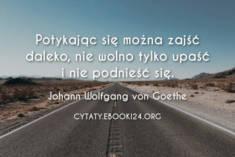 ✩ Johann Wolfgang von Goethe cytat o wytrwałości ✩ | Cytaty motywacyjne