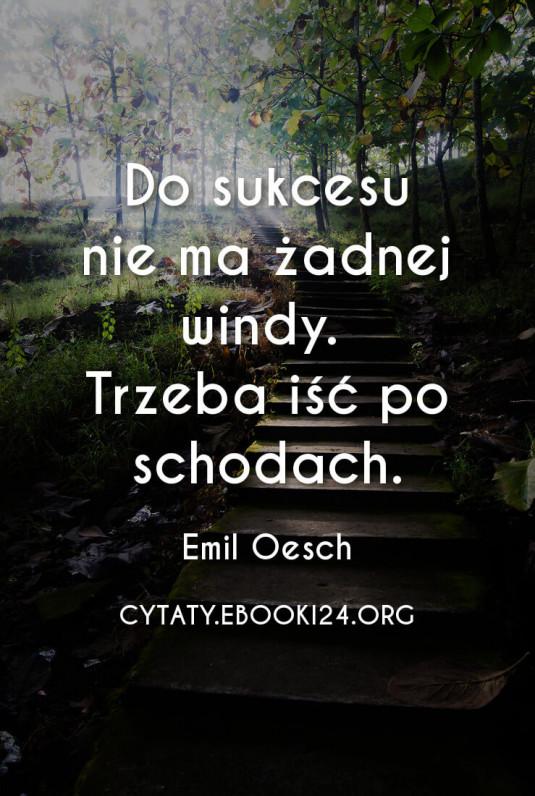 ✩ Emil Oesch cytat o sukcesie ✩ | Cytaty motywacyjne