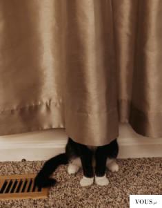 Nikt mnie nie znajdzie
